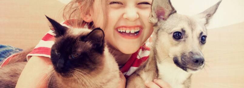 Qualquer situação é melhor com um cão ou um gato