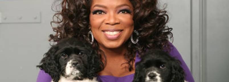 Oprah explica o que é o amor de um cão.
