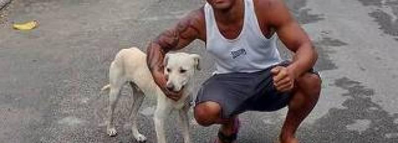 Cachorro faz xixi nas costas de homem e acaba sendo adotado por ele