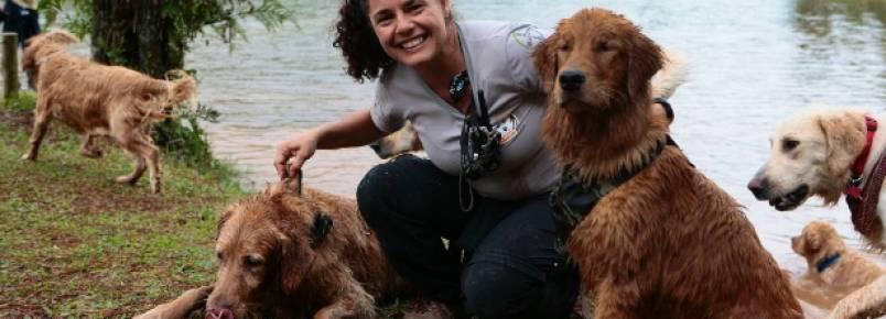 Donos levam seus animais de estimação para fazer trilhas na mata