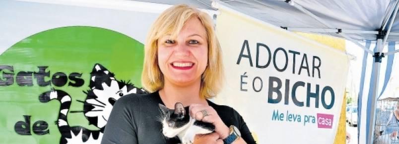 Feiras de adoção em Piracicaba conseguem lar para 23 animais