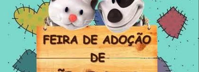 ONG realiza feira de adoção de animais todos os domingos em São Paulo