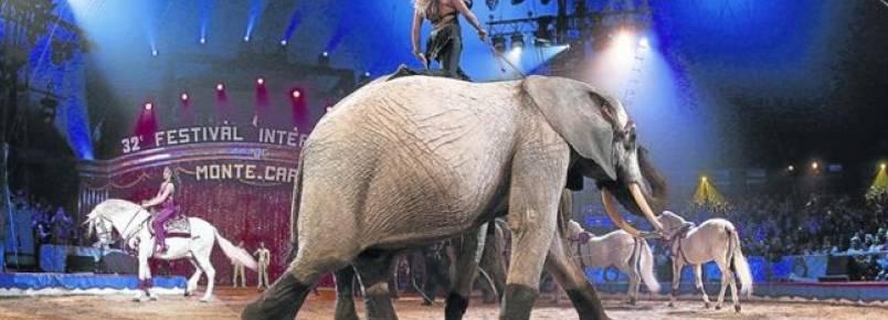 Varsóvia proíbe circos com animais