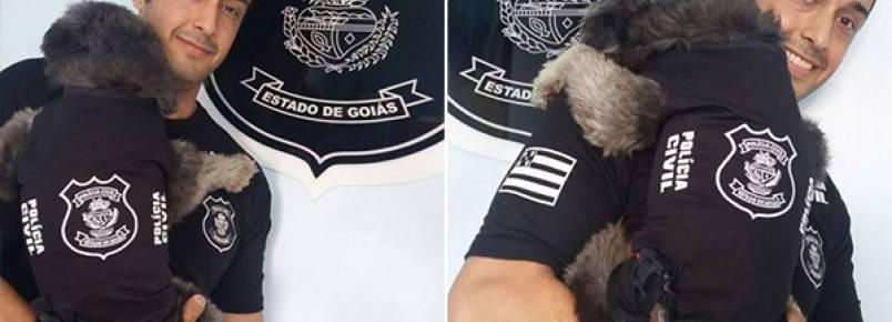 Delegacia em Goiás adota cadela de rua