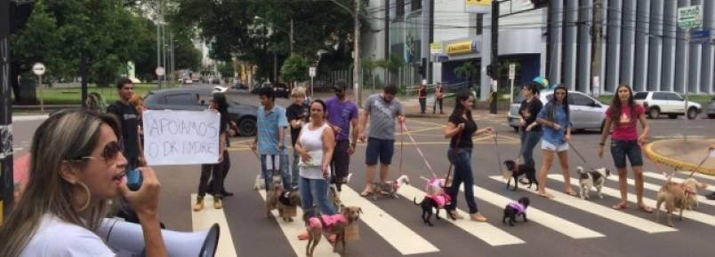 Donos de cães fazem manifesto de apoio a médico veterinário autuado