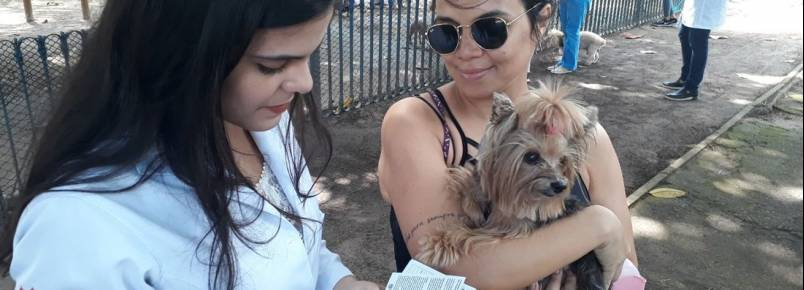 Vacinação de cães e gatos contra a raiva, no Recife, começa neste sábado (24)