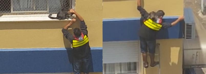 Motoboy arrisca a própria vida para resgatar gato pendurado em prédio.