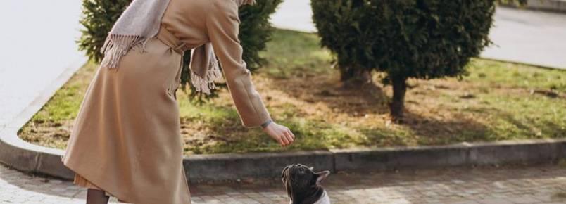 Prefeitura de Blumenau libera entrada de pets em dois parques
