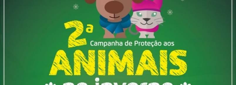 Blumenau terá campanha para arrecadar itens que protejam animais no inverno