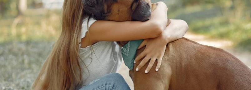 Quais são as vantagens de ter um cachorro?