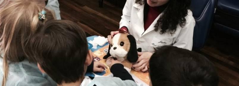 Mini Hospital Veterinário da UFPR ensina guarda responsável de animais em escolas de Curitiba