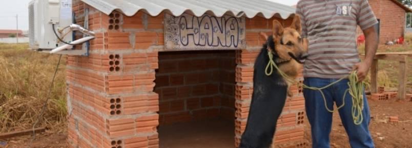 Guaraiense instala ar-condicionado na casinha de sua cadela