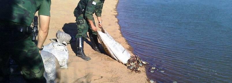 Polícia detém homem e apreende mais de 700 caranguejos em Marataízes (ES)