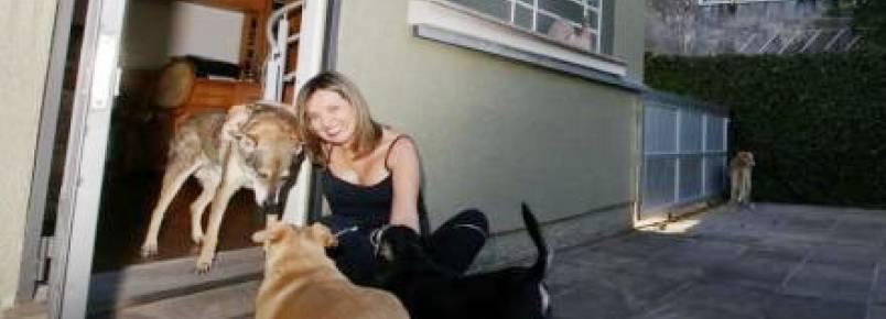 Casa abriga cães idosos e doentes em Porto Alegre