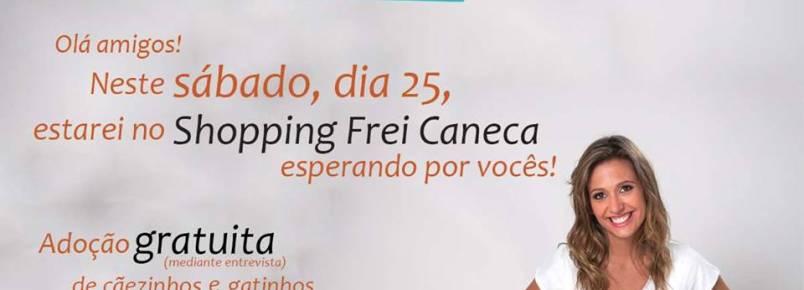 Instituto Luisa Mell realiza feira de adoção em São Paulo