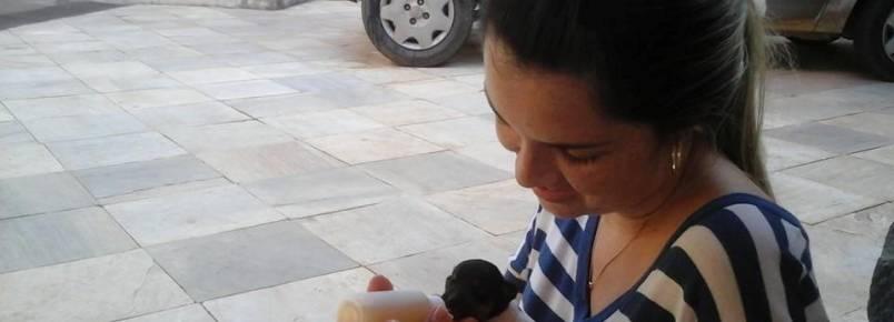 Dra. Marcela alimenta filhotinho que mãe não produz leite