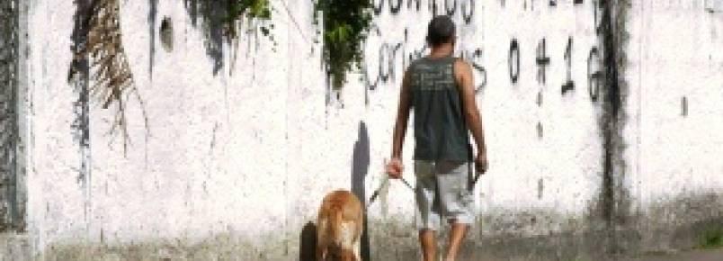Nova lei em Santos irá multar quem não limpar a sujeira de animais