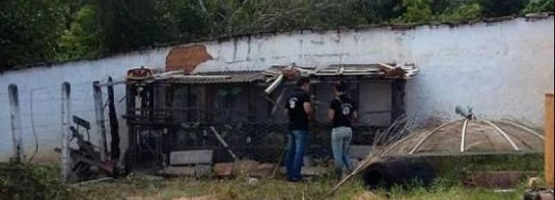 Ong denuncia desaparecimento de animais recolhidos pela prefeitura em Rio de Contas