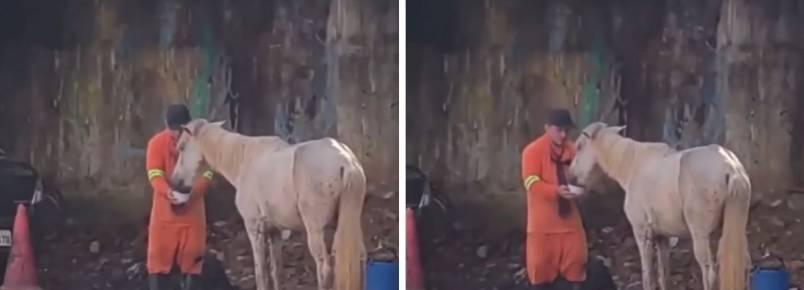 Gari interrompe trabalho para dar água para cavalo que passava mal no meio da rua