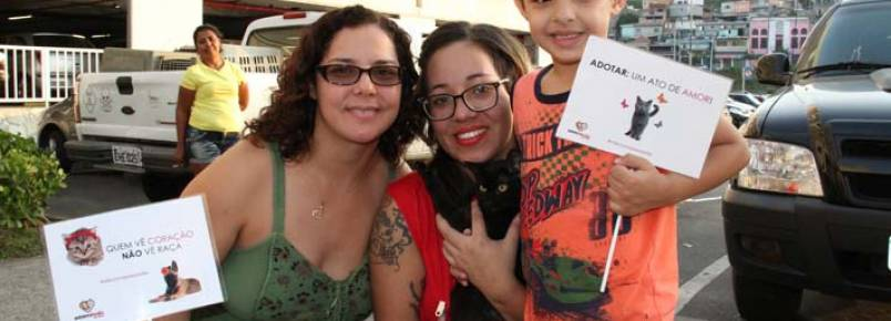 91 animais foram adotados na feira realizada no Shopping Taboão