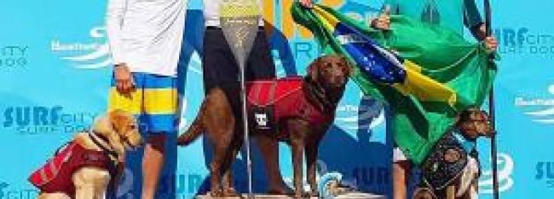 Cães brasileiros ocupam pódio em campeonato internacional de surf