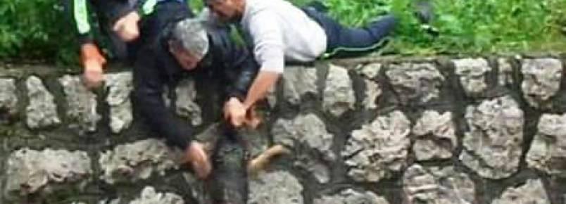 Vídeo mostra resgate angustiante de cachorro durante cheias na Bósnia