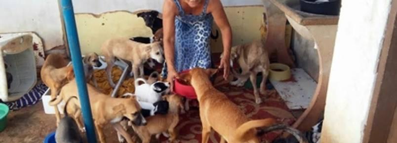 Brumadense diz que terá que soltar 70 animais nas ruas porque não tem mais como cuidar deles
