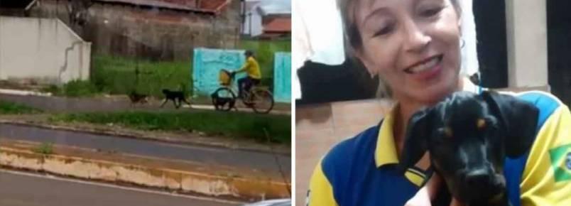 Enquanto trabalha, carteira distribui ração e amor para animais de rua em Campo Mourão (PR)