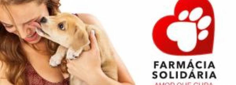Projeto Farmácia Solidária arrecada e doa medicamentos para ajudar animais resgatados em BH