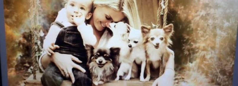Ana Hickmann, seu filho e alguns de seus cães posaram para campanha contra o abandono de animais