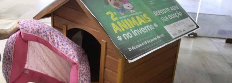 Campanha de Proteção aos Animais conta com 30 pontos de coleta
