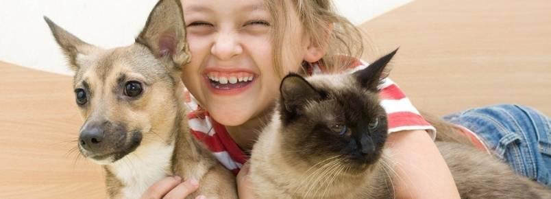 Convivência entre crianças e animais de estimação traz série de benefícios