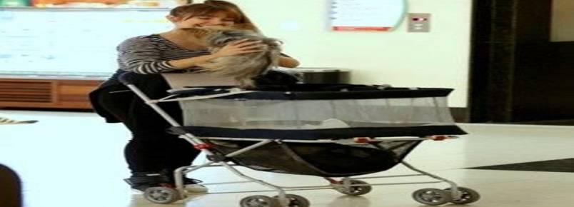 """Carla Diaz usa carrinho """"de bebê"""" para passear com cão em shopping"""