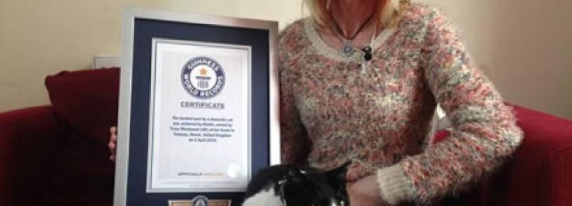 Gato bate recorde com o ronronar mais alto do mundo