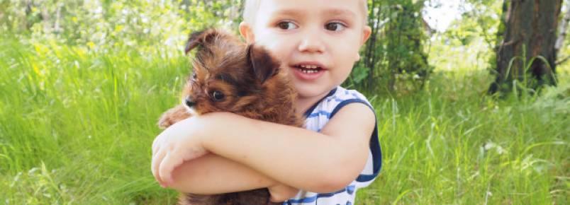 Qual a melhor raça de cachorro para criança?