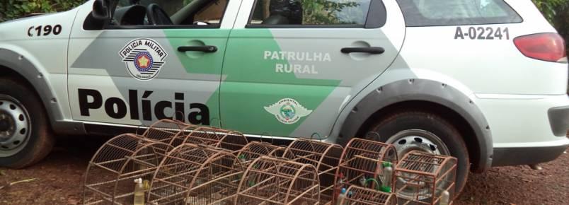 Polícia Ambiental flagra pássaros em cativeiro em Barra Bonita