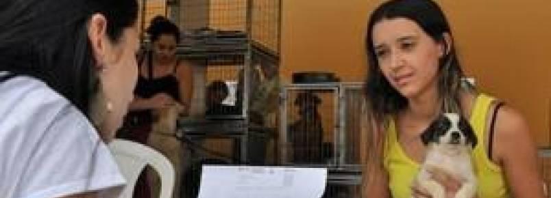 Feira de adoção garante lar para animais
